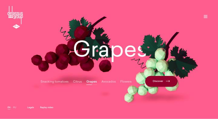 site internet original om&go.jpg
